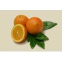 Merlin oranges
