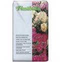 Florabella: Ericaceous Plant Soil